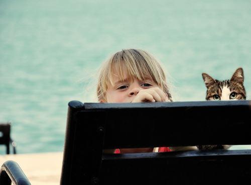 Bambina e gatto spiaggia