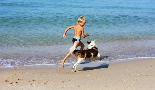 bambino che corre sulla spiaggia con il proprio cane