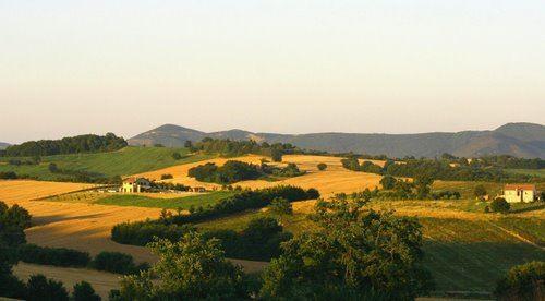 Landscape delle colline verdi dell' Umbria