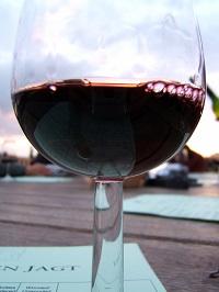 vino rosso colli euganei